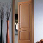 Практичная дверь
