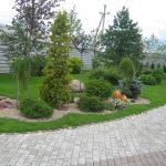 Основные виды озеленения приусадебного участка