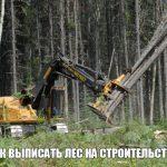 Бесплатные стройматериалы: 150 кубов леса на строительство дома от государства