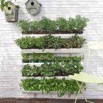 Как сделать огород на балконе своими руками