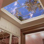Дизайн потолков в вашей прихожей: побелка, окраска, панели-ПВХ, подвесной — О Комнате