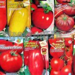 Как выбрать семена помидор